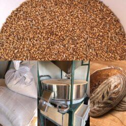 Stone Ground Organic Flour